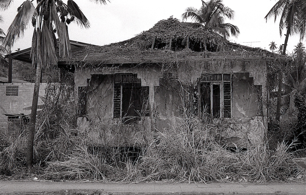 Trinidad Abandoned House